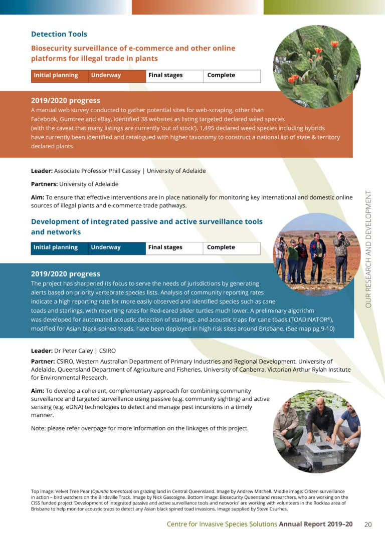 ciss-annual-report-19-20-web-28