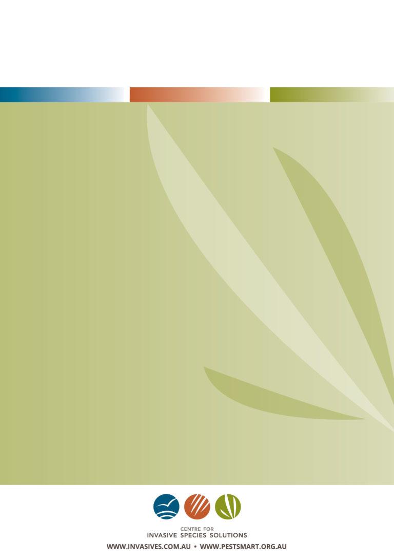 ciss-annual-report-19-20-web-89